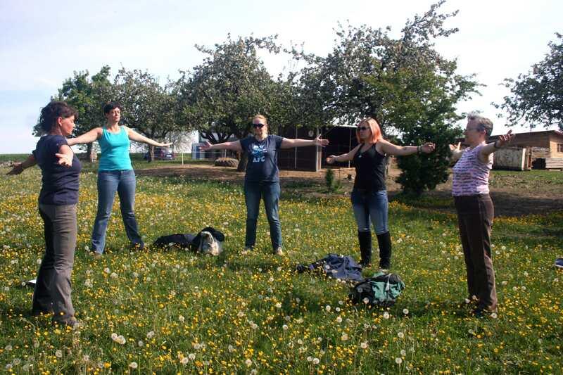 Übungen in der Gruppe beim Pferdegestützten Training