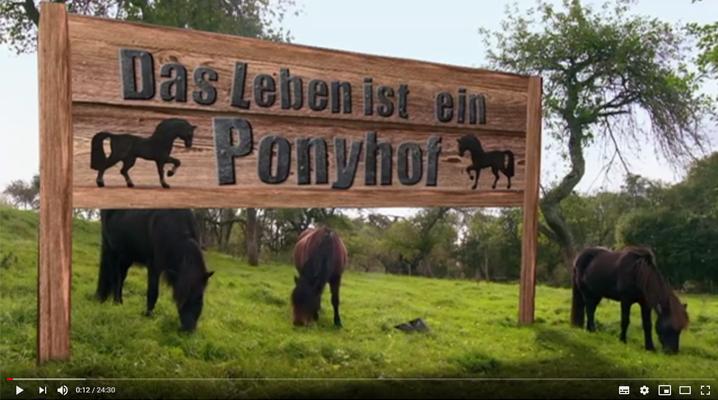 """""""Das Leben ist ein Pferdehof"""""""